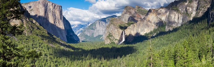 cервис в городах США, сервис Сан-Франциско, туры в Йосемити, Yosemite Tour, coach tour from San-Francisco